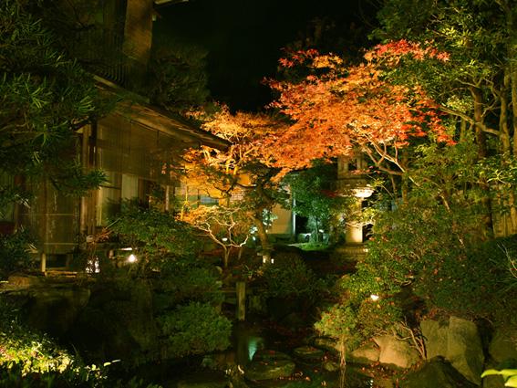 引以為豪的庭園有超過400年的歷史