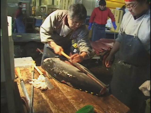 Tukiji fishmarket